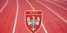 wzla-nowa-strona-logo
